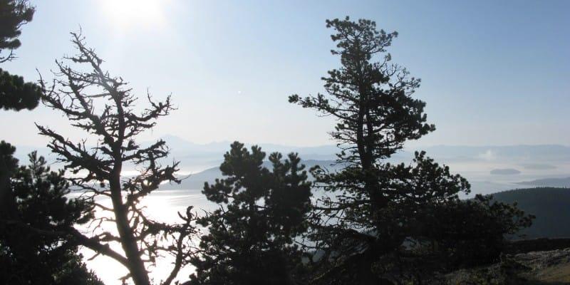 Mount Constitution, September 2009