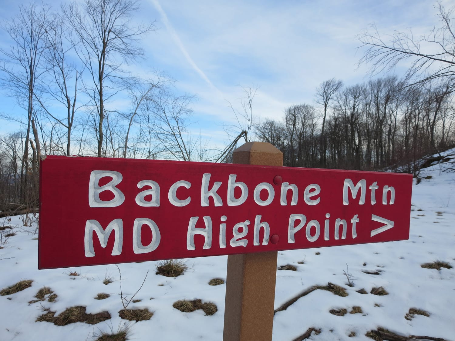 Backbone Mountain, Maryland Highpoint